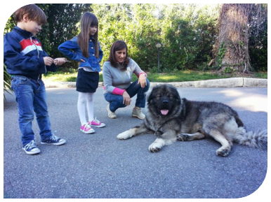 Caucasian shepherd with family and children